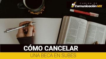Cómo cancelar una Beca en SUBES: Qué es SUBES, sus funciones y requisitos para solicitar una Beca