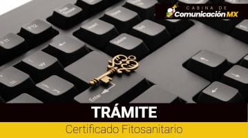 Certificado Fitosanitario: Qué es, para qué sirve y cómo tramitarlo