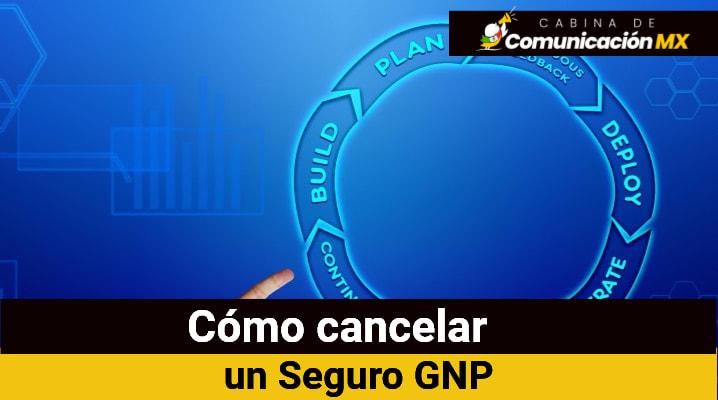 Cómo cancelar un seguro GNP: Qué es GNP Seguros, sus servicios y cómo afiliarse