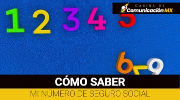 Como saber mi número de Seguro Social: Qué es el NSS, para qué sirve, cómo está compuesto y Ley del Seguro Social