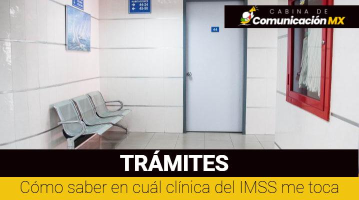 Cómo saber en cuál clínica del IMSS me toca: A través de la aplicación, cuáles son las clínicas del IMSS y que enfermedades atienden