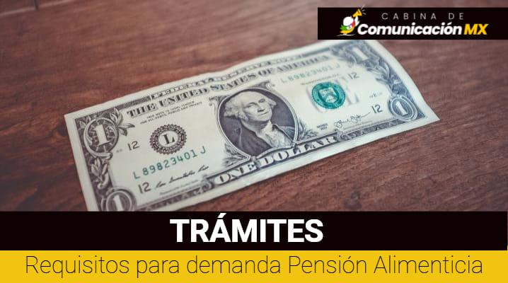 Requisitos para demanda Pensión Alimenticia: En qué consiste la pensión Alimenticia, cómo solicitarla y casos para solicitar la Pensión alimenticia