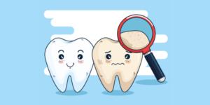 Cuál es la señalización de Protección Civil para un Consultorio Dental