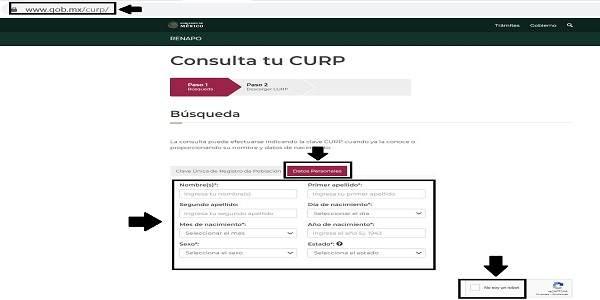 requisitos para curp paso 2