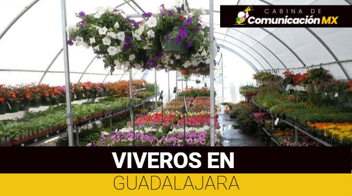 Viveros en Guadalajara