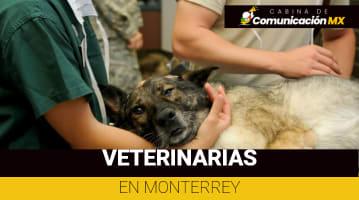 Veterinarias en Monterrey