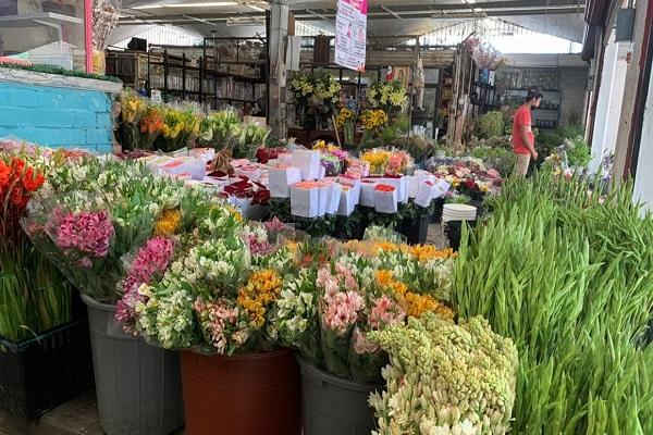 florerías en guadalajara